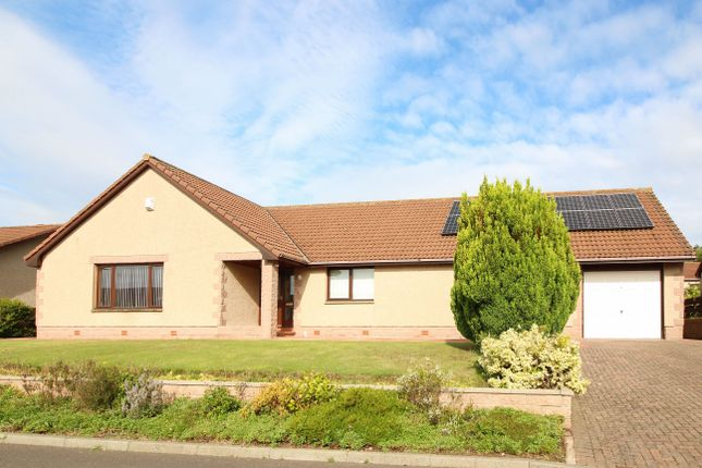 Thumbnail Bungalow for sale in Gillsland, Eyemouth