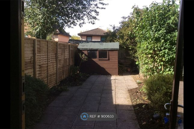 Back Garden And New Fence