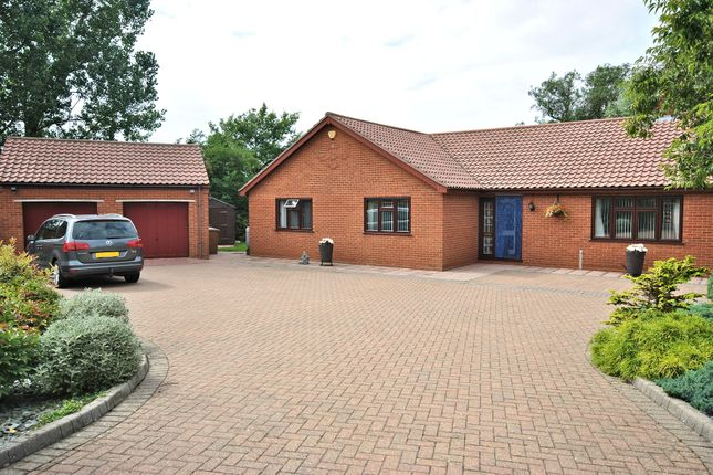 Thumbnail Detached bungalow for sale in Chapel Lane, West Winch, King's Lynn