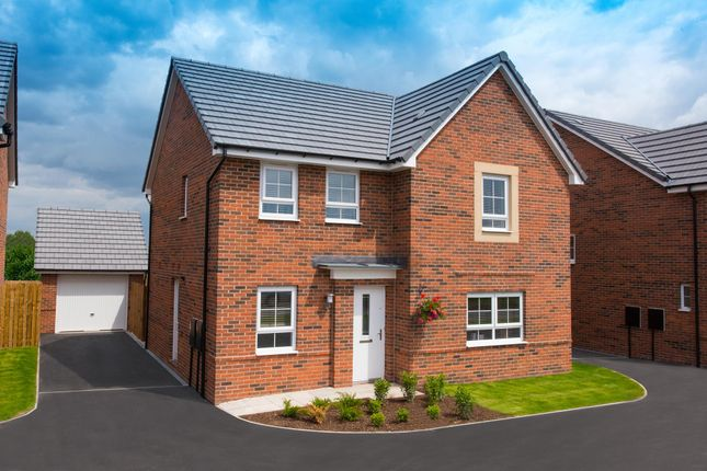 """Thumbnail Detached house for sale in """"Radleigh"""" at The Long Shoot, Nuneaton"""