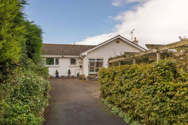 Thumbnail Detached bungalow for sale in Balnagowan, North Berwick