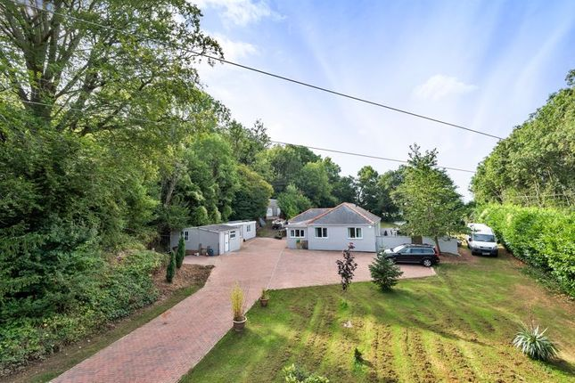 4 bed bungalow for sale in Crick, Monmouthshire NP26