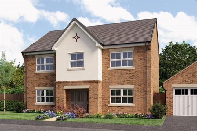 "Thumbnail Detached house for sale in ""The Chichester"" at Otley Road, Killinghall, Harrogate"
