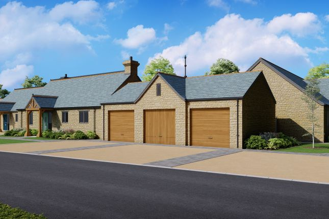 Thumbnail Detached bungalow for sale in Pippin, East Chinnock, Yeovil