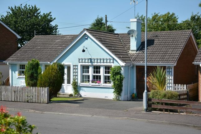 Thumbnail Bungalow for sale in Temple Rise, Templepatrick, Ballyclare