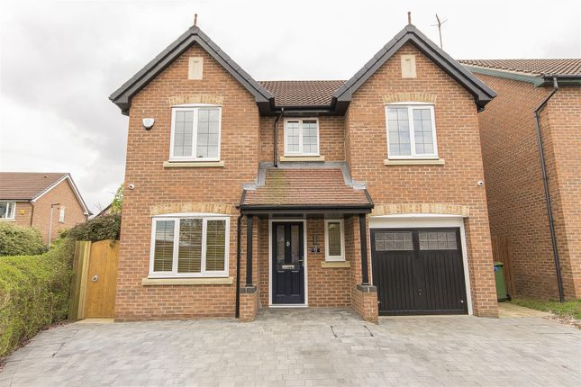 Thumbnail Detached house for sale in Foxbrook Court, Walton, Chesterfield