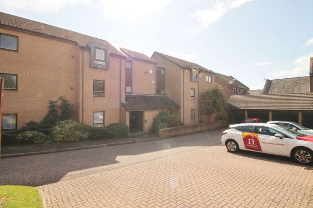 Thumbnail Flat to rent in Shepherds Loan, Dundee
