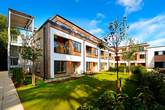 1 bed property to rent in Wispers Lane, Haslemere GU27
