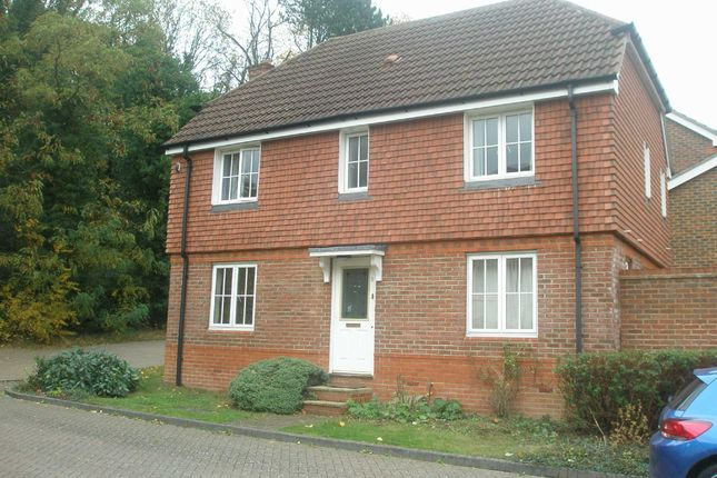 Thumbnail Detached house to rent in Newlyn Close, Orpington