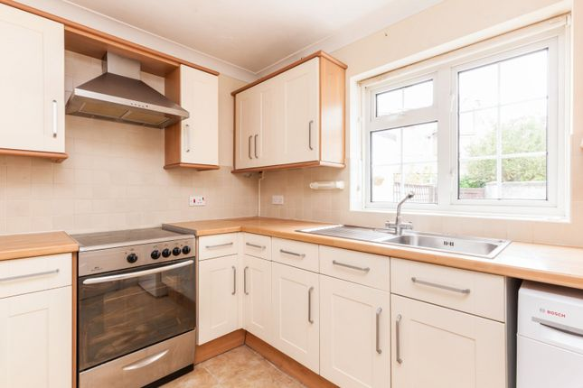 Thumbnail Terraced house to rent in Furness Road, Eastbourne