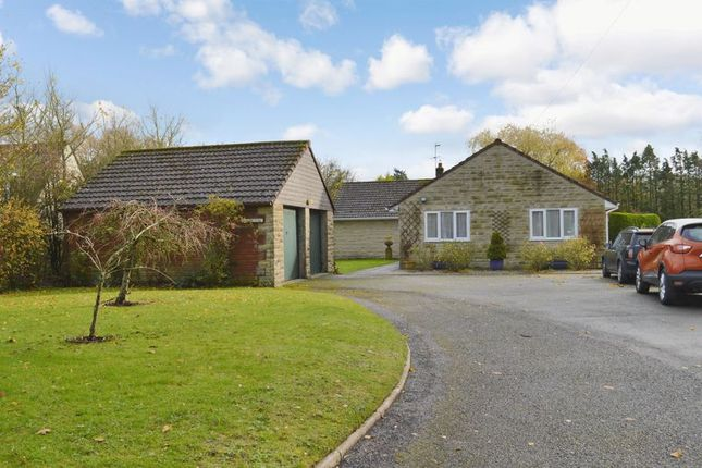 Thumbnail Detached bungalow for sale in Rook Street, Mere, Warminster