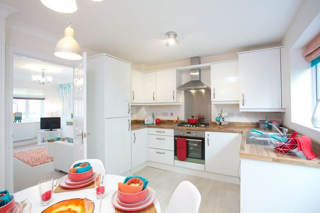 Thumbnail Terraced house for sale in Cropper Road, Blackpool