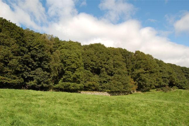 Thumbnail Land for sale in Gornal Ground Wood, Roanlands Brow, Millom, Cumbria