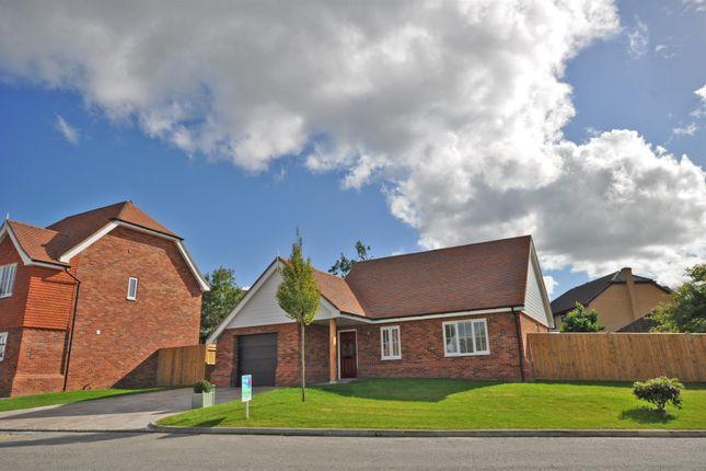 Thumbnail Detached bungalow for sale in Oak Fields, Hailsham