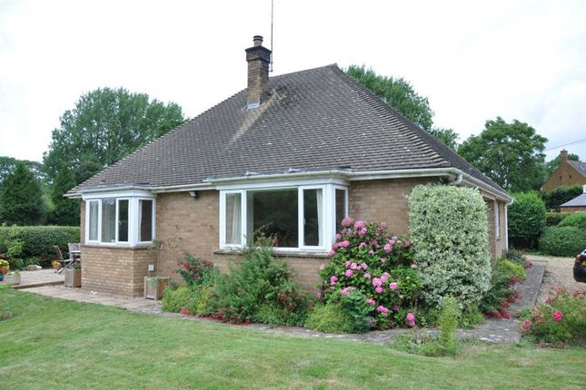 Thumbnail Bungalow to rent in The Green, Newnham, Daventry