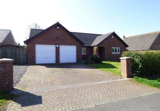 Thumbnail Detached bungalow for sale in Empire Way, Gretna, Dumfries And Galloway