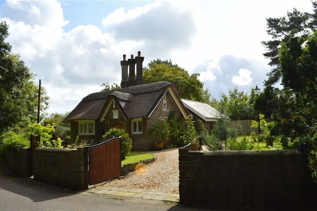 Thumbnail Detached house for sale in Singleton Park, Swansea