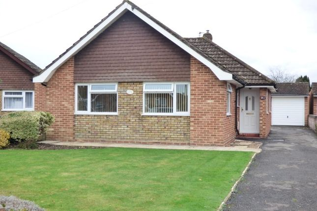 Thumbnail Detached bungalow for sale in Malwood Gardens, Totton