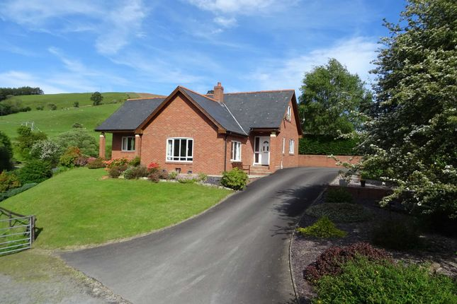 Thumbnail Detached house for sale in Gorn Road, Llanidloes, Powys