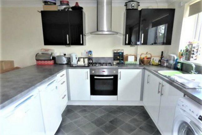 Thumbnail Detached house to rent in Poplar Road, Taunton