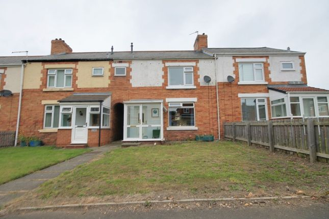 Thumbnail Terraced house for sale in Burn Park Road, Houghton Le Spring