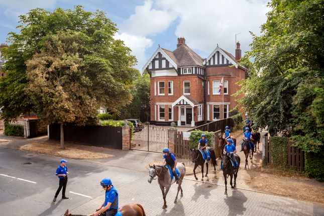 Thumbnail Detached house for sale in Bury Road, Newmarket