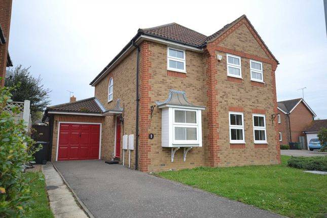 Thumbnail Detached house to rent in Conyer Close, Maldon