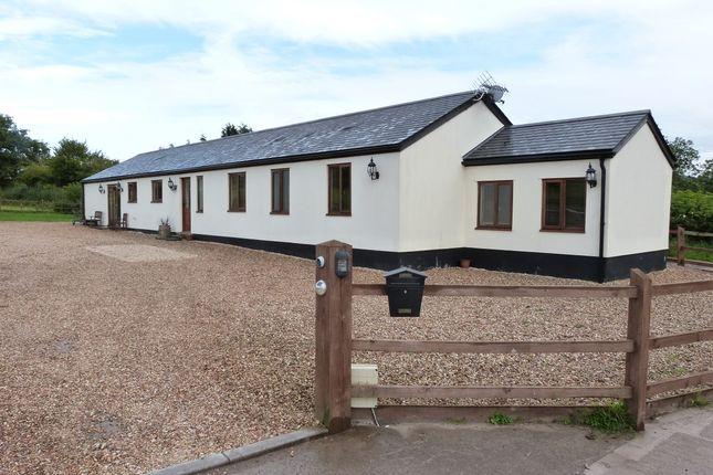 Thumbnail Detached bungalow for sale in Llanhennock, Newport