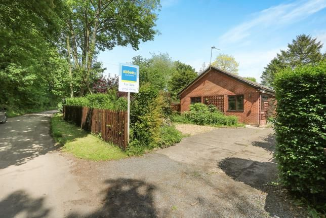 Thumbnail Bungalow for sale in Rockland All Saints, Attleborough, Norfolk