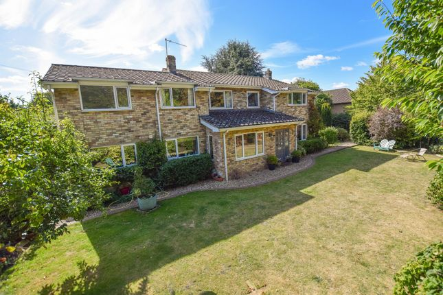 Thumbnail Detached house for sale in Swan Lane, Exning, Newmarket
