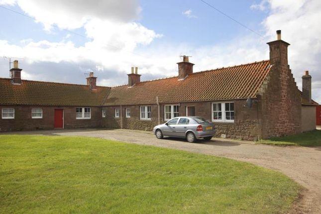 Thumbnail Terraced house to rent in Bielgrange Cottages, Stenton, Dunbar