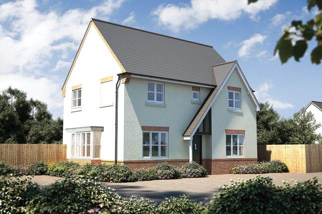 "Thumbnail Detached house for sale in ""The Rainham"" at Ashburton Road, Totnes"