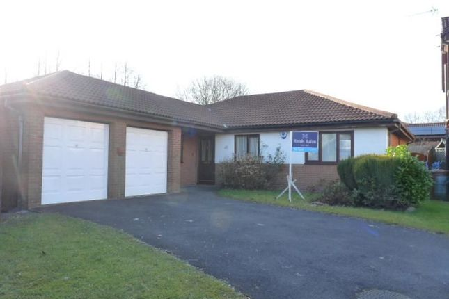 Thumbnail Bungalow to rent in Harlech Close, Haslingden, Rossendale
