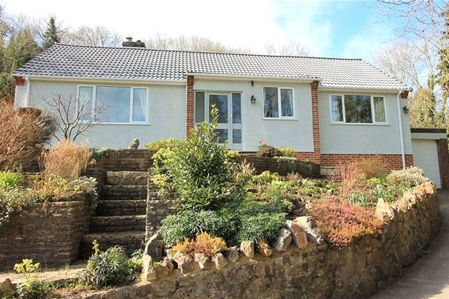 Thumbnail Detached bungalow for sale in Banwell, North Somerset