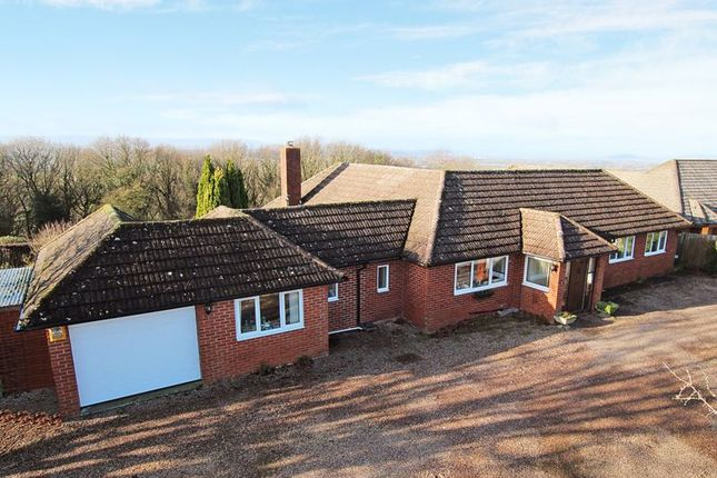 Thumbnail Bungalow for sale in Kingsthorne, Hereford