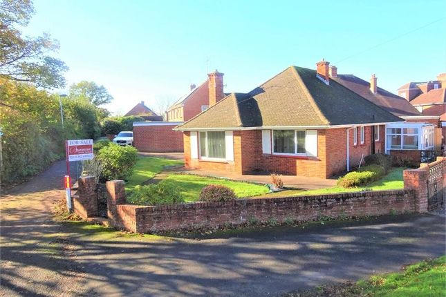 Thumbnail Detached bungalow for sale in Harts Lane, Exeter