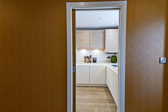Kitchen Door of 6, Albury Place, Shrewsbury SY1