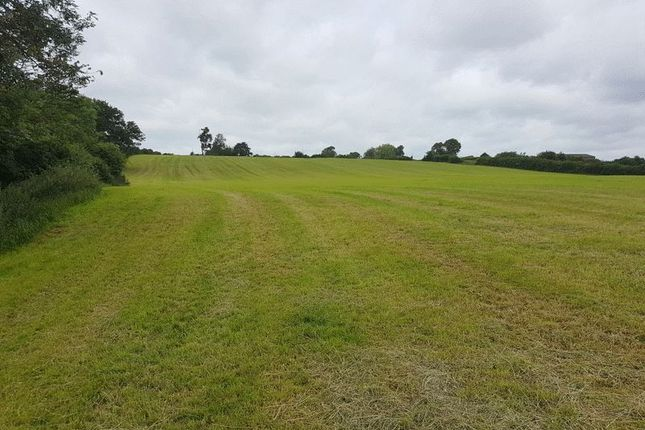 Thumbnail Land for sale in Agricultural Land On Newlands Lane, Blithbury, Staffordshire