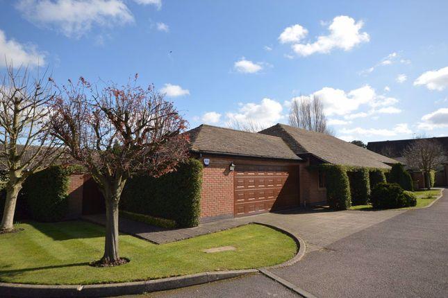 Thumbnail Bungalow to rent in Apple Tree Close, Edwalton, Nottingham