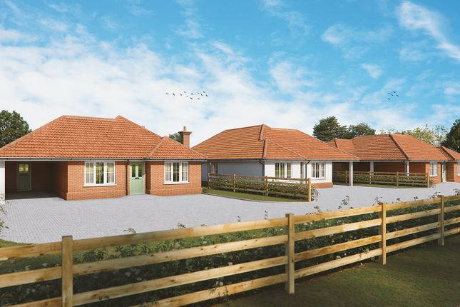 3 bed detached bungalow for sale in Folly Lane, Copdock, Ipswich IP8