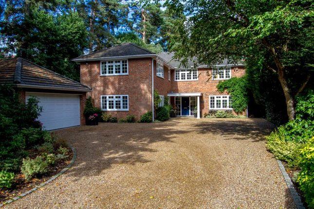 Thumbnail Detached house to rent in Cedar Road, Hook Heath, Woking