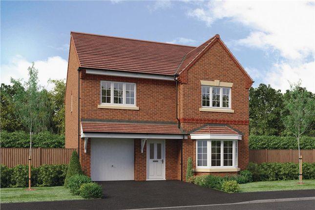 "Thumbnail Detached house for sale in ""Hollingwood"" at Park Lane, Castle Donington, Derby"