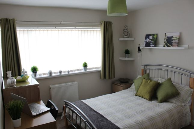 Thumbnail Room to rent in Lancaster Road, Shrewsbury
