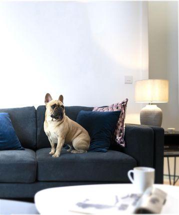 Pet Friendly of Dearmans Place, Salford M3