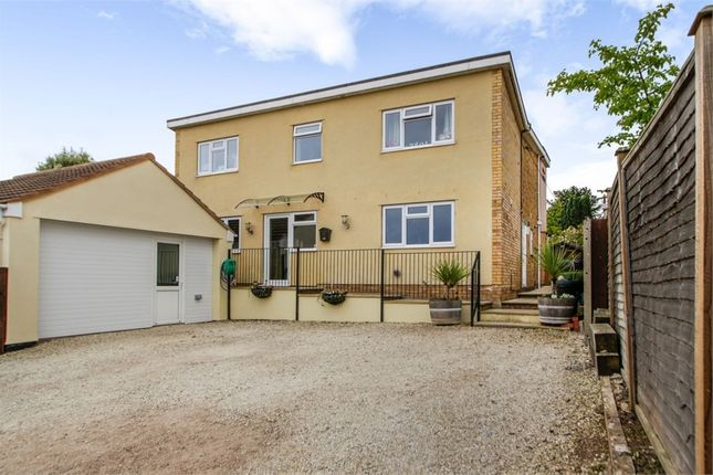 Thumbnail Detached house for sale in Cliff Road, North Petherton, Bridgwater, Somerset