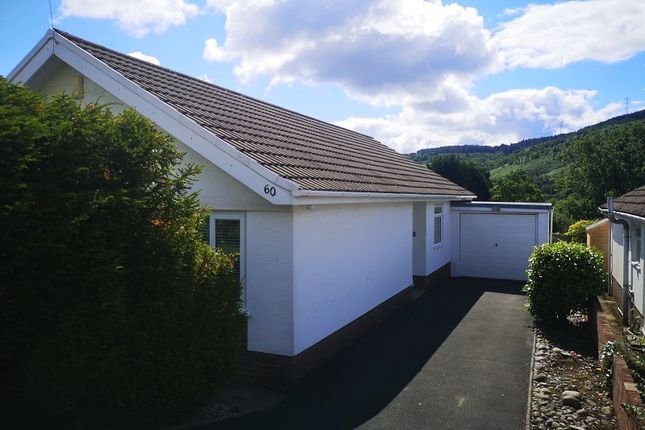 Thumbnail Bungalow to rent in Pine Valley, Cwmavon, Port Talbot, Neath Port Talbot.