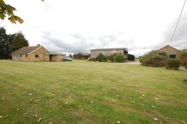 Thumbnail Detached bungalow for sale in Orsett Road, Horndon-On-The-Hill, Stanford-Le-Hope