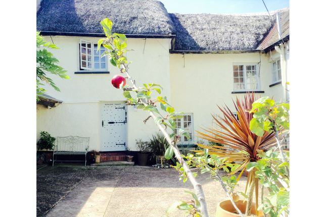 Thumbnail Cottage for sale in Fore Street, Morchard Bishop