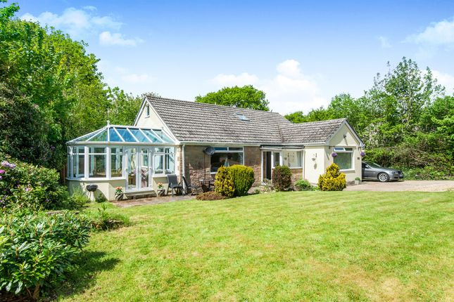 Thumbnail Bungalow for sale in Axe Valley Close, Axminster