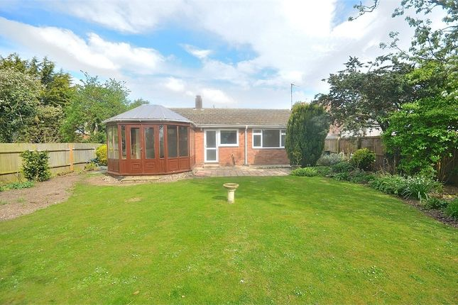 Thumbnail Semi-detached bungalow to rent in Braintree Road, Felsted, Dunmow